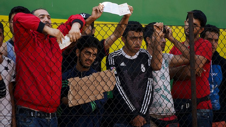 Niemieccy Zieloni: wśród uchodźców z Syrii są przestępcy wojenni