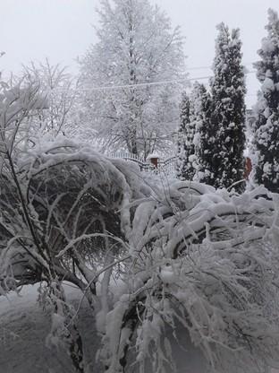 2017-01-14 Uroki zimy na Podkarpaciu