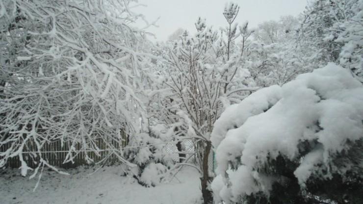 2016-11-10 Śnieżny poranek w Białymstoku. Zima coraz bliżej