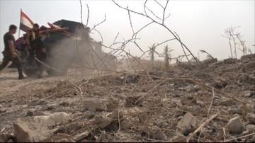 06-06-2016 10:42 Pod Faludżą odkryto zbiorowy grób z ciałami ponad 400 osób