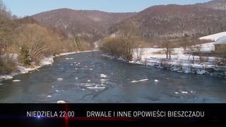 Drwale i inne<br>opowieści Bieszczadu