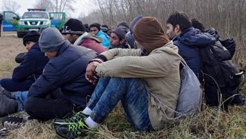 12-02-2016 17:25 Czechy: Unia musi deportować część uchodźców
