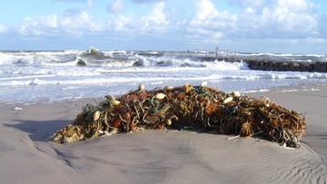 15-10-2015 09:54 268 ton sieci widm wyłowiono z Bałtyku