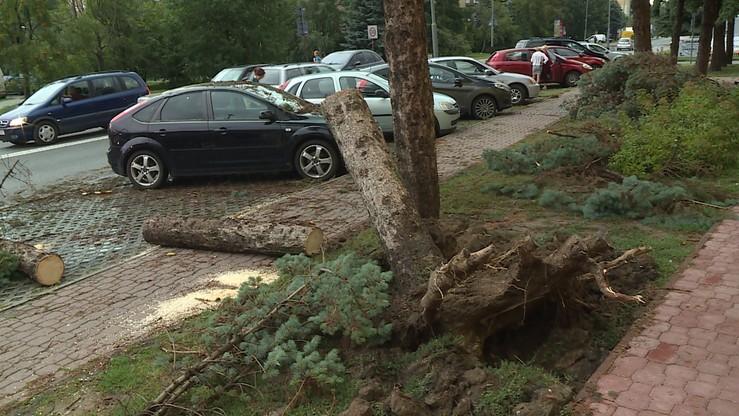Ponad tysiąc odbiorców bez prądu po burzach