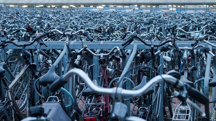 Rowerowe korki w Kopenhadze. Tablice informacyjne zaproponują objazdy