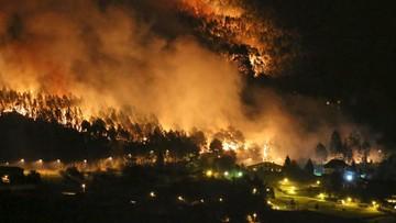 28-12-2015 14:56 Hiszpania: strażacy walczą z blisko 120 pożarami lasów