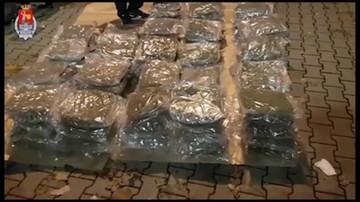 Policjanci przejęli transport marihuany o wartości prawie 3 mln złotych