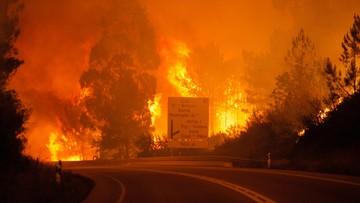 18-06-2017 14:02 Ogromny pożar lasów w Portugalii. Rośnie bilans ofiar