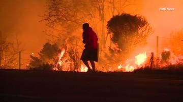 Pożary lasów w Kalifornii. Ogień dotarł do granic Los Angeles.