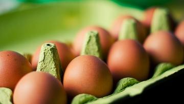 """W Polsce wykryto """"potencjalnie skażone jaja"""". Nie trafiły do konsumentów"""