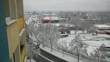 2016-12-02 Śnieg na ulicach, szadź na drzewach. Zima w Puławach