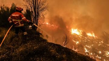 19-06-2017 14:26 Portugalia: pożar z Leirii rozprzestrzenił się na sąsiednie dystrykty