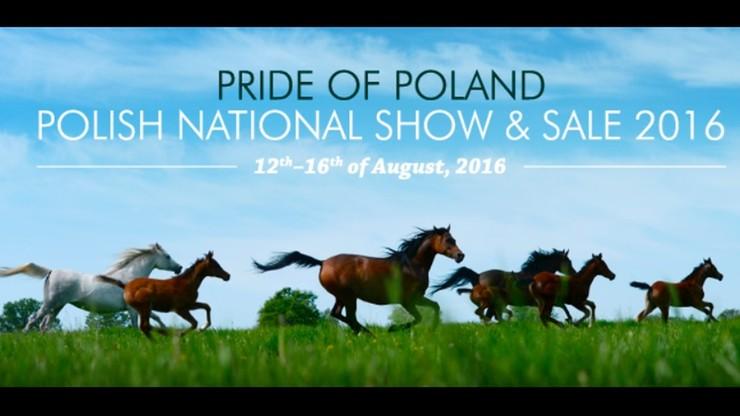 """Niepewna przyszłość aukcji Pride of Poland. """"Ja bym się bał"""""""