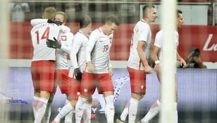 Polska - Słowenia 1:1