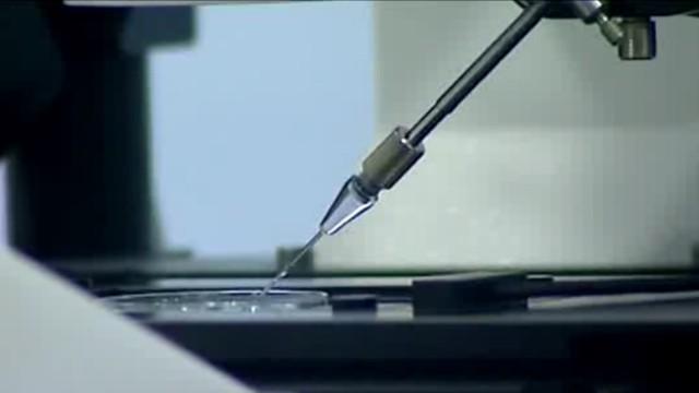 Warszawa będzie refundowała zabiegi in vitro