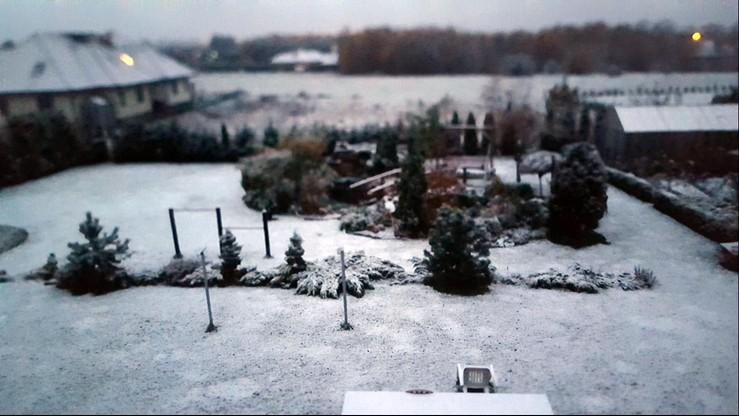 2016-11-08 Kobylnica koło Słupska (woj. pomorskie) pod śniegiem. Na północy już prawie zima