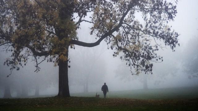 W.Brytania: Peturbacje na lotniskach i drogach z powodu gęstej mgły