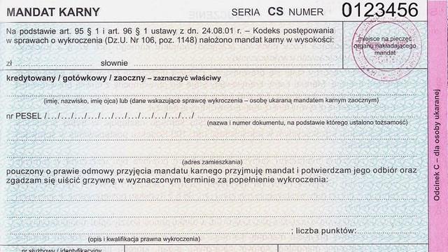 Sejm: mandat będzie można opłacić kartą płatniczą