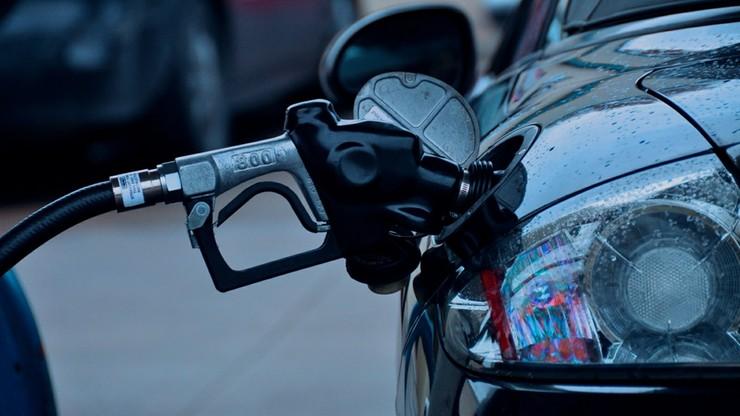 Paliwa podrożeją o 2-3 grosze za litr