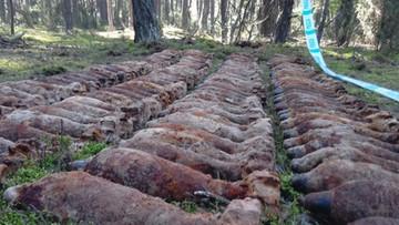 20-09-2016 07:03 Arsenał w lesie na Mazowszu – ponad 200 kg materiałów wybuchowych