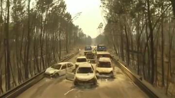 Pożar lasów w Portugalii. Służby opublikowały dramatyczne nagrania z drona
