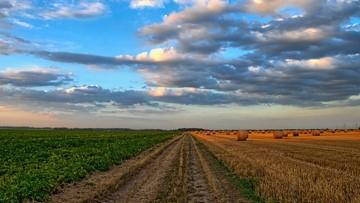 08-05-2017 17:30 Powołano 2,5 tys. komisji ds. szacowania szkód w rolnictwie. Pracę skończyły nieliczne