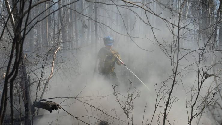 Kanada: pożary lasów rozszerzają się i zagrażają kolejnej prowincji
