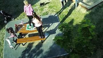 13-07-2017 12:09 Bulterier pogryzł troje dzieci na placu zabaw. Według weterynarza, pies nie jest jednak agresywny