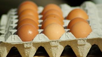 25-11-2016 17:28 GIS ostrzega przed salmonellą w trzech partiach jaj  z Fermy Drobiu Woźniak