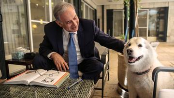 10-12-2015 19:26 Pies izraelskiego premiera pogryzł jego politycznych gości