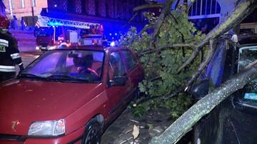 Nocne nawałnice nad Polską. Powalone drzewa i uszkodzone budynki