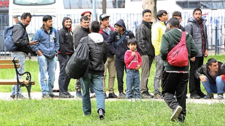 AI: 80 proc. ankietowanych deklaruje gotowość przyjęcia uchodźców w swoim kraju