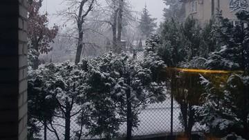 2017-11-20 Śnieg w Warszawie i okolicach