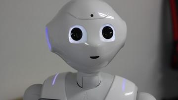 31-01-2017 13:31 Robot obywatelem Belgii. Dostał akt urodzenia od burmistrza miasta