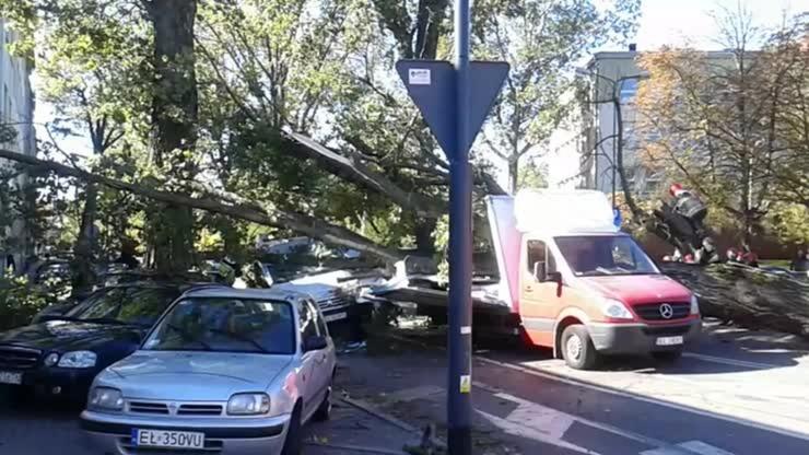 2016-10-04 Łódź: wiatr powalił drzewo na jadące samochody