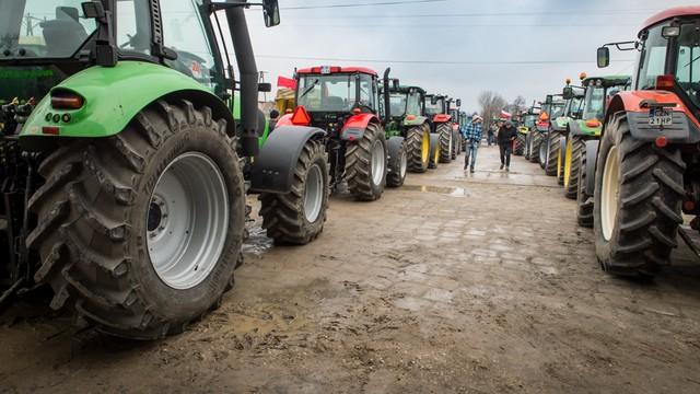 Rolnicy bez unijnych dopłat? PSL - to byłaby kompromitacja Polski