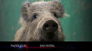 Eko Patrol