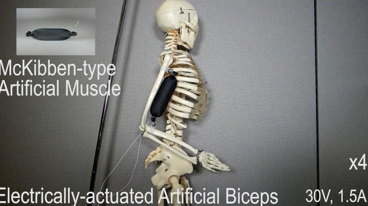 """""""Sztuczne mięśnie"""" z drukarki 3D. Rewolucja w robotyce"""