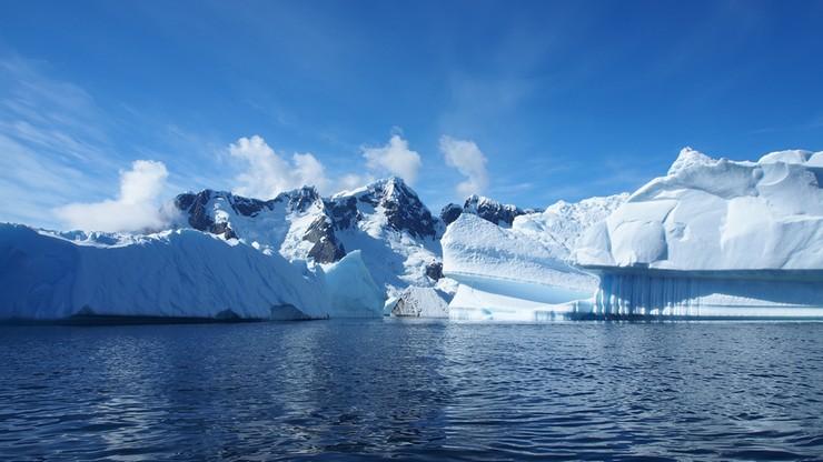 U wybrzeży Antarktydy powstanie największy na świecie rezerwat morski
