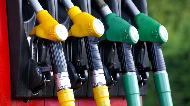 Samochody na benzynę i ropę będą zakazane? Taki plan mają Zieloni