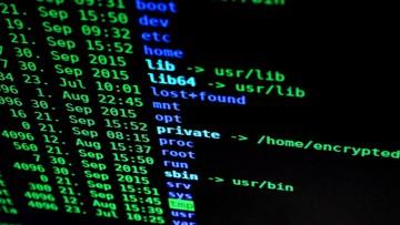 """27-07-2017 17:43 Google ostrzega przed rosnącą falą ataków hakerskich. """"Są bardzo, bardzo opłacalne"""""""