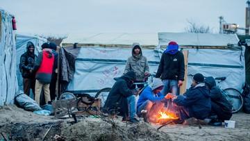 26-12-2015 20:35 Coraz więcej wniosków o nadanie statusu uchodźcy w Polsce