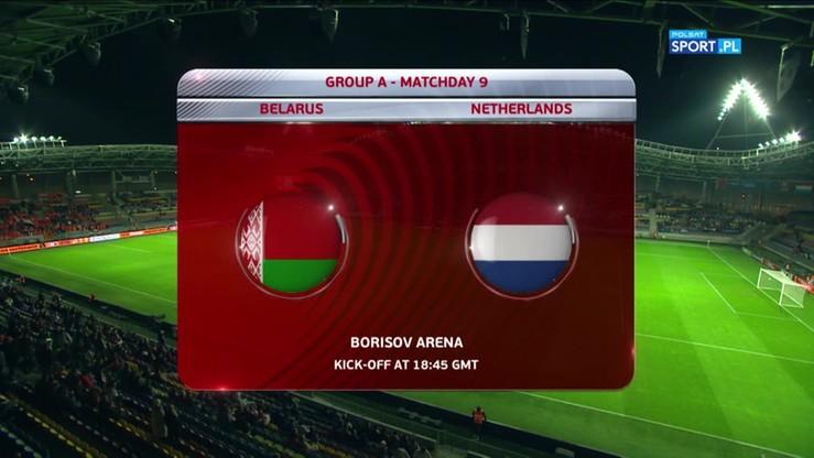 Białoruś - Holandia 1:3. Skrót meczu