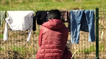 31-05-2017 13:34 CBOS: 70 proc. Polaków przeciw przyjmowaniu uchodźców, 25 proc. - za