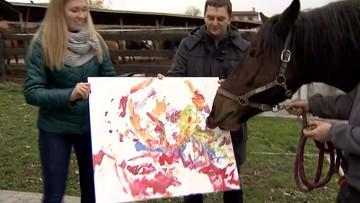 Konie malują, by mieć na remont stajni