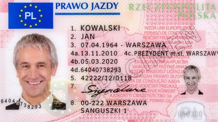 Plaga fałszywych polskich praw jazdy w Holandii