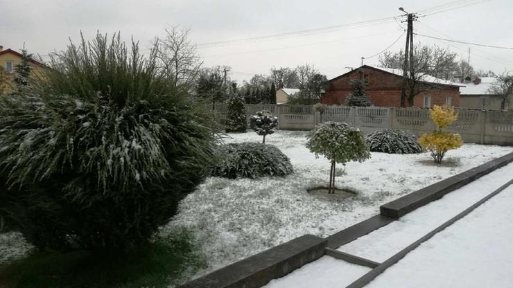Kalisz zasypany śniegiem