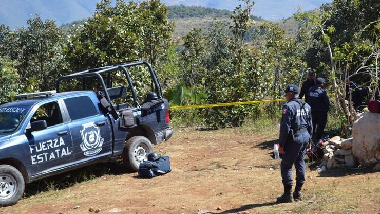 9 głów i szczątki 32 osób znaleziono w grobach zbiorowych w Meksyku