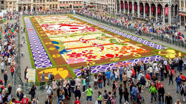 """Niesamowity """"dywan"""" w Brukseli. Zrobiono go z 600 tys. kwiatów"""