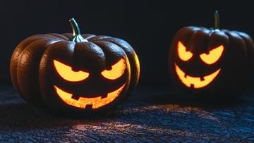 """12-10-2016 15:20 """"Halloween czyni zamieszanie w umysłach dzieci"""" - bydgoski kurator oświaty bije na alarm"""
